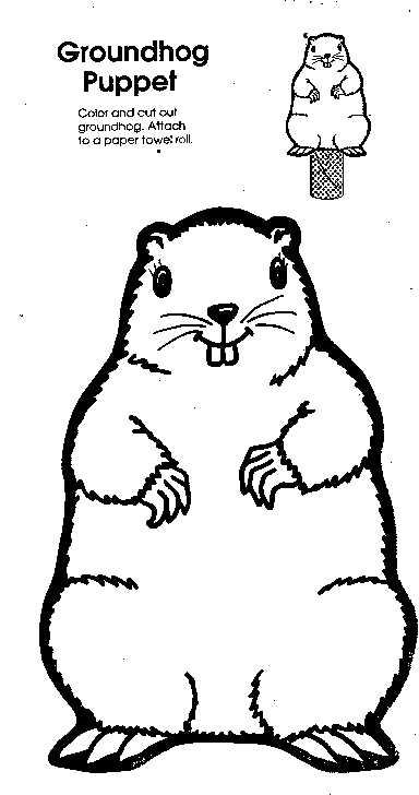 Groundhog Puppet Pattern